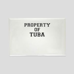 Property of TUBA Magnets
