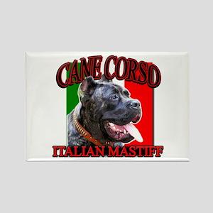 Cane Corso Italian Mastiff Rectangle Magnet