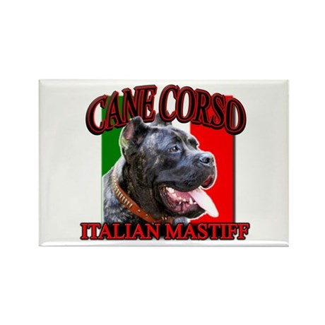 Cane Corso Italian Mastiff Rectangle Magnet