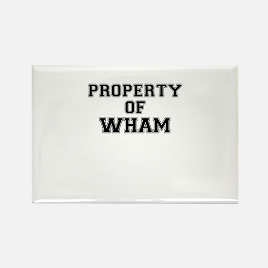 Property of WHAM Magnets
