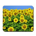 Sunflower Cluster Mousepad