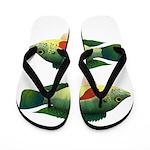 Mozambique tilapia Flip Flops