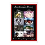Sacrifices Postcards (Package of 8)