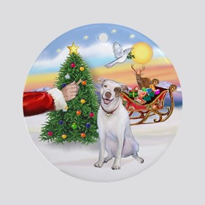 Treat for a Pitbull Ornament (Round)
