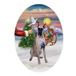 Treat for a G Dane (fawn) Oval Ornament