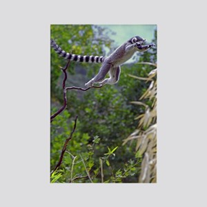 Leaping Lemur Rectangle Magnet