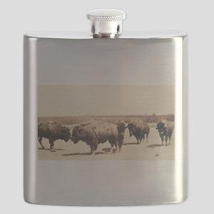 Dusty Bison Transfer Print Flask