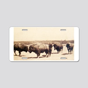 Dusty Bison Transfer Print Aluminum License Plate