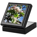 Apple Blossoms Keepsake Box