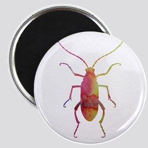 Beetle Magnets