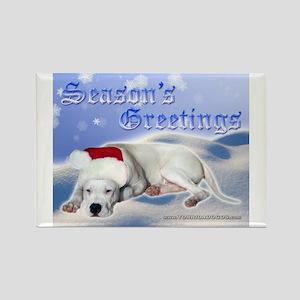 Season's Greetings Rectangle Magnet (10 pack)