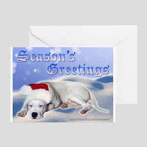 Season's Greetings Greeting Cards (Pk of 20)