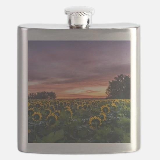 Kansas Sunflower Sunrise Flask