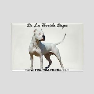 Torrida Dogos 2 Rectangle Magnet (10 pack)