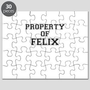Property of FELIX Puzzle