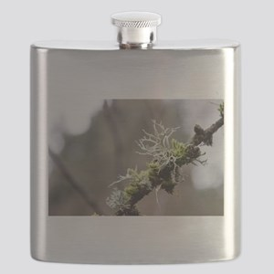 Mossy Frill Flask