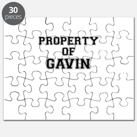 Property of GAVIN Puzzle