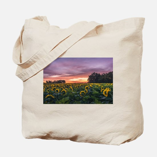 Kansas Sunflower Sunrise Tote Bag
