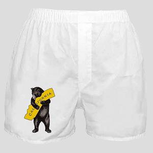 Vintage California Bear Hug Illustrat Boxer Shorts