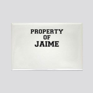Property of JAIME Magnets