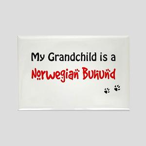 Norwegian Buhund Grandchild Rectangle Magnet