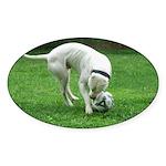 LOS POLLEO DOGOS Oval Sticker