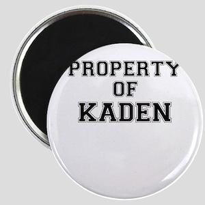 Property of KADEN Magnets
