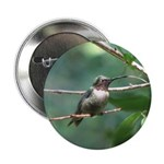 """Hummer Kisses 2.25"""" Button (10 pack)"""