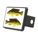 Brownspot Largemouth Cichlid Hitch Cover