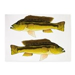 Brownspot Largemouth Cichlid 5'x7'Area Rug