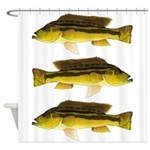 Brownspot Largemouth Cichlid Shower Curtain