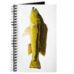 Brownspot Largemouth Cichlid Journal