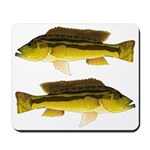 Brownspot Largemouth Cichlid Mousepad