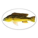 Brownspot Largemouth Cichlid Sticker