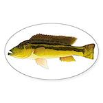 Brownspot Largemouth Cichlid Sticker