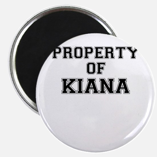 Property of KIANA Magnets