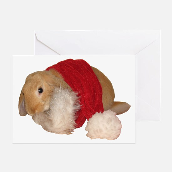 """Xmas Bunny 1"" Greeting Card"