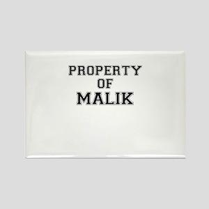 Property of MALIK Magnets