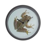 Pacific Treefrog Wall Clock