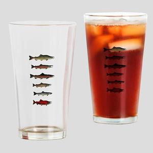 SPECIES Drinking Glass