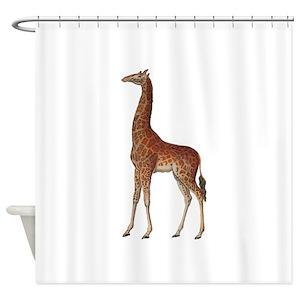 Zulu Shower Curtains