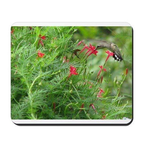 Ruby-throat and Cypress Vine Mousepad
