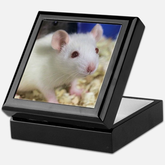 Unique Rats Keepsake Box