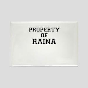 Property of RAINA Magnets