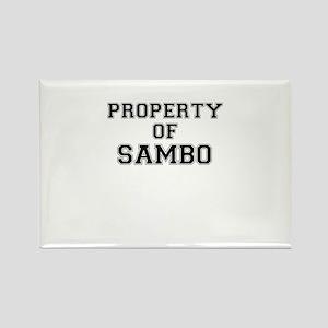 Property of SAMBO Magnets