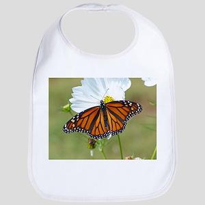Monarch Butterfly on Cosmos Bib