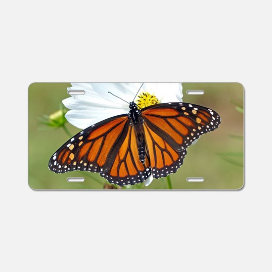 Monarch Butterfly on Cosmos Aluminum License Plate
