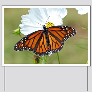 Monarch Butterfly on Cosmos Yard Sign