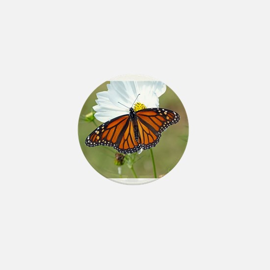 Monarch Butterfly on Cosmos Mini Button