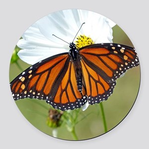 Monarch Butterfly on Cosmos Round Car Magnet